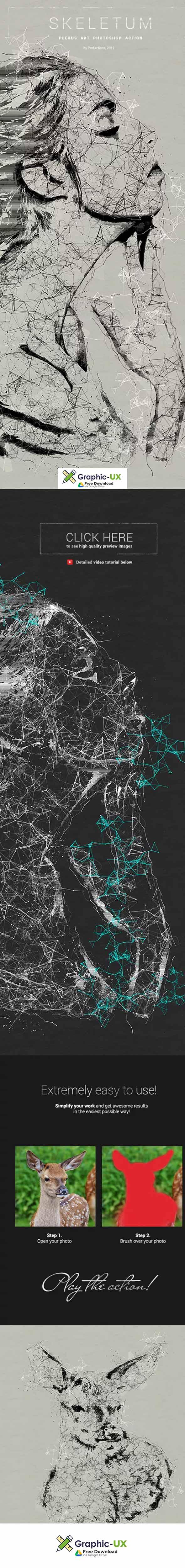 Skeletum - Plexus Art Photoshop Action free download – GraphicUX