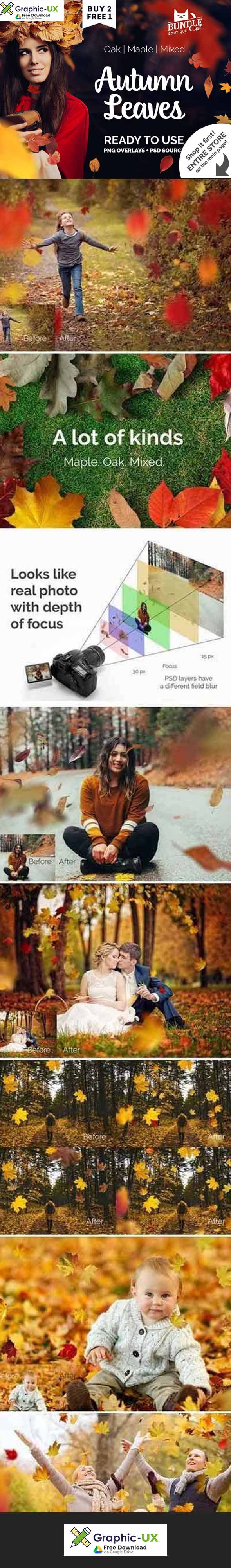 97 Autumn Leaves Photo Overlays
