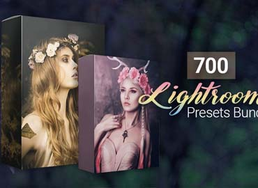 700 Amazing Lightroom Presets Bundle